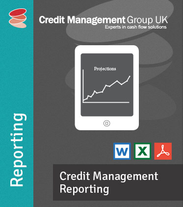 Credit Management Reporting