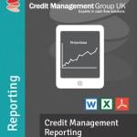 Credit Management Reporting